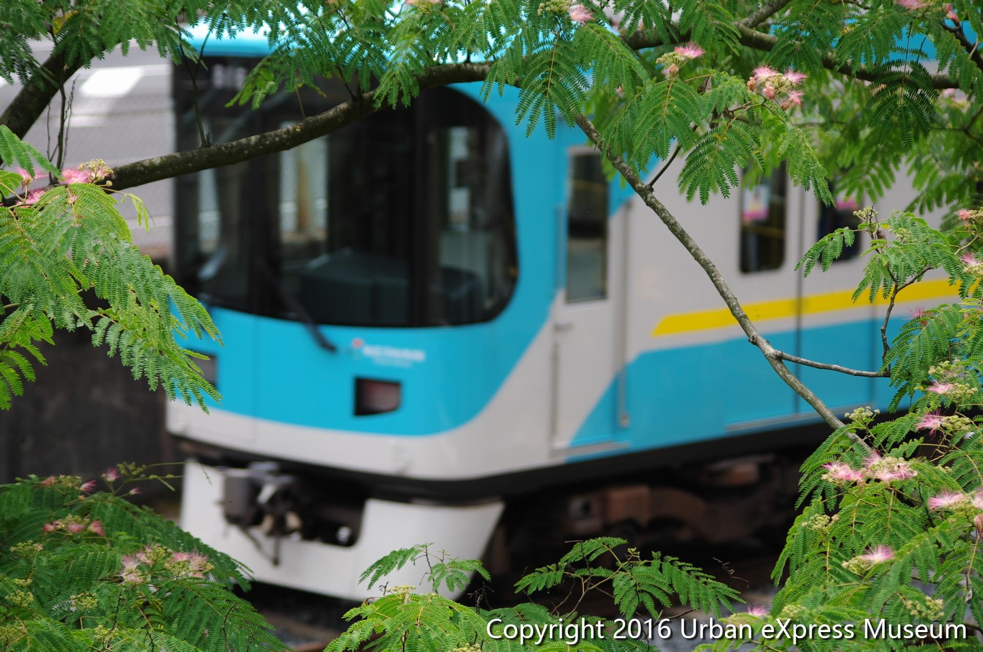 京阪800系 - 緑に囲まれて - Urban eXpress Museum